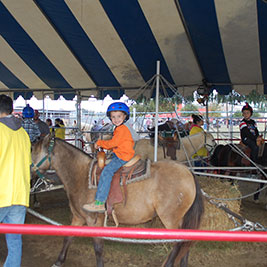 pony-ride-web